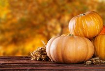 Healthy Fall / Enjoy this season with healthy alternatives to some of your favorite recipes. Plus, enjoy great health and beauty tips for the fall!