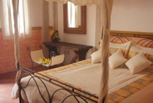 Casonas ( Colonial Mexican Homes )  / The mission of Haciendas, Casonas y Estancias de Jalisco is to offer you extraordinary experiences that allow you to satisfy your way of life in the art of living.
