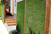 Green Roofs and Vertical Walls