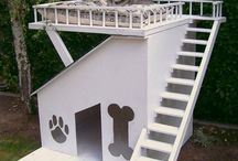 Dog House / Dream House  / by Lyndsey Moore
