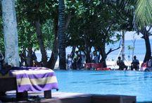 Headquarters Beach Bar