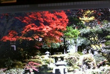 Pictures of Japan / by Mary Bramos