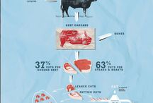 meat infogrtaphy