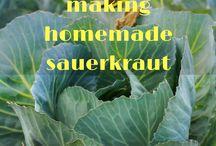 Ferments/cultured foods