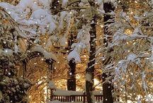 Winter / Outside...inside...cold...hot....brightness....Christmas....❄️⛸