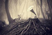 Music is 100% Organic Communication.