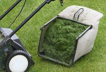 Composting / Grass clippings