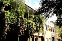 New Orleans / So many reasons to love New Orleans. Check out the full Fathom guide: http://shar.es/VkX0L / by Fathom