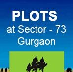 Plots in Gurgaon