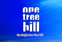 Only One Tree Hill / After 9 seasons, 187 episodes, 6 time slot changes and 2 networks this little show that could became the EPIC show that did!