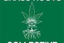 Marijuana Jobs Near Me / www.budtrader.com is the largest medical marijuana marketplace around. Browse local ads for medical marijuana related jobs!