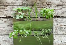 outdoors ideas/diy / by Kendra Leigh