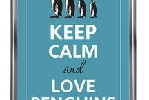 Pinguine ♥
