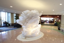 State of the Art / Images, sculptures and art at The Nebraska Medical Center in Omaha, Nebraska / by Nebraska Medicine
