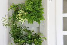 cadre végétale