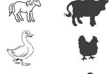 zvířata na statku