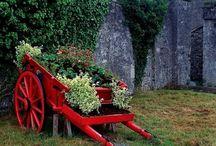 Gardens decor