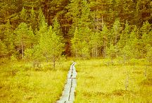 Pohjola. / What Finland really is about. Mystical, peaceful, natural.
