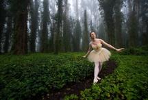 Balocity / Ballet