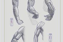 Anatomía - Hombre