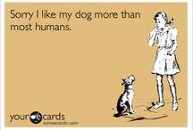 Dog eCards