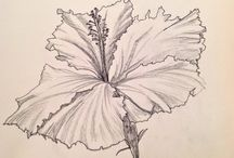 Pen and Ink / by Callie Ferman