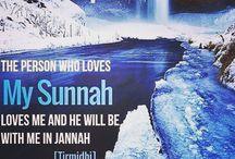 HADITH - AS SUNNAH  as ROSULULLAH SAW teach us / Follow the Sunnah of Rosulullah SAW