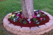 Jardinera/patio
