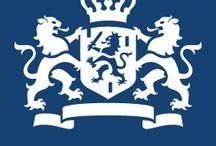 logo huisstijl