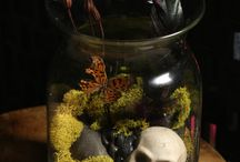 terrarium / I fancy trying this! Creating another world in a class ball so I can escape to it!