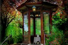 Outdoors / by Lyndsay Starks Guhr