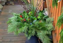 Holiday Landscaping Ideas