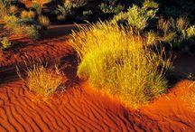 Landscapes - Deserts