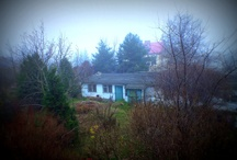 Window, Autumn and Winter