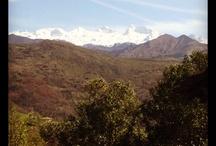 Cerca de Pandesiertos