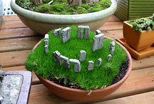 mini  ogród