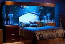 Exclusive AQUARIUM Ideas for an Attractive Home