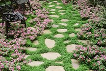 Garden Paths and patios