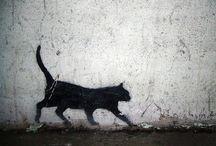black cats / gatos negros / Donde quiera que miro, veo bellos gatos negros