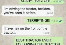 Humor horse