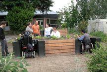 Wishlist: Interpretive Gardens