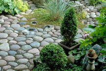 kertek,növények