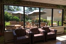 Healing Gardens / Gardens in health care settings provide respite for patients, family members and their care givers.