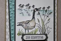 Wetlands stamps