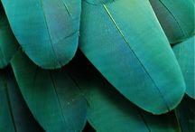 Greenish inspo
