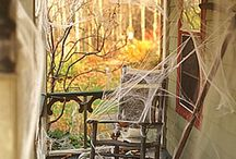Halloween / by Maren Nelson