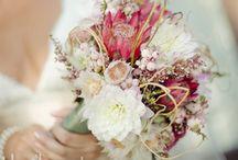 Wedding Details / by Nelly Arruda Soares