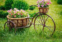 Ogród
