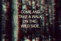 Walk on the wild side / by Wendy Pope
