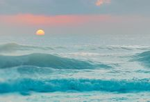 KR - SURF